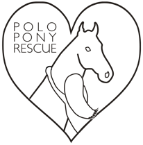 Polo Pony Rescue